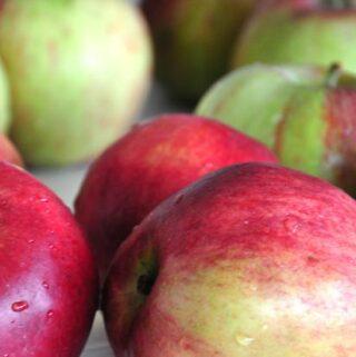 najzdrowsze owoce lokalne - właściwości jabłek