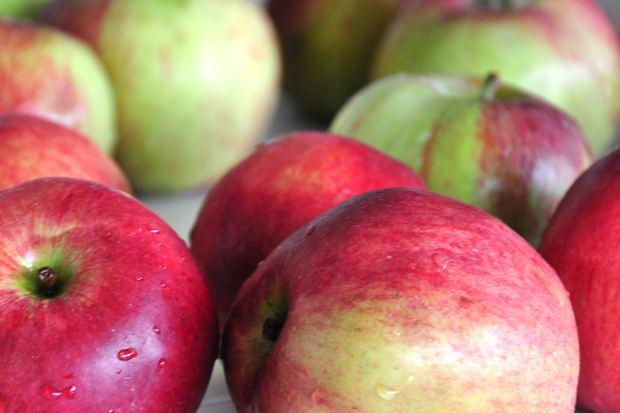 Najzdrowsze owoce lokalne, czyli dlaczego warto jeść jabłka?