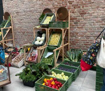 Bazary, rynki lokalne z warzywami i owocami bez chemii i pestycydów