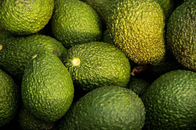 awokado to bardzo odżywczy owoc
