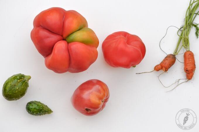 Brzydka prawda o warzywach i owocach│Surojadek.com