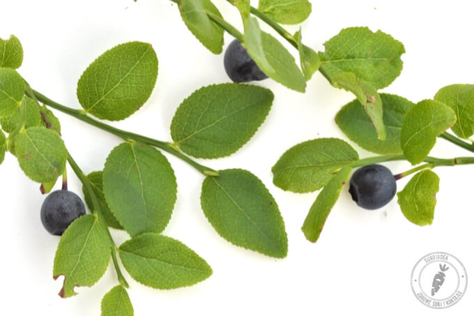 czarne jagody pełne antyoksydantów