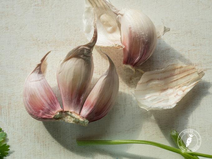 przepis na pastę roślinną na kanapki lub dip do warzyw , aromatyczny i bardzo zdrowy
