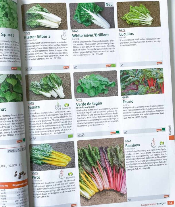 Gdzie kupić ekologiczne nasiona? W niemieckim sklepie  Birgenheimer Saatgut dostępny jest największy wybór nasion warzyw, owoców, ziół.