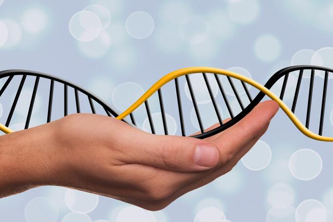 zapanuj nad swoimi genami