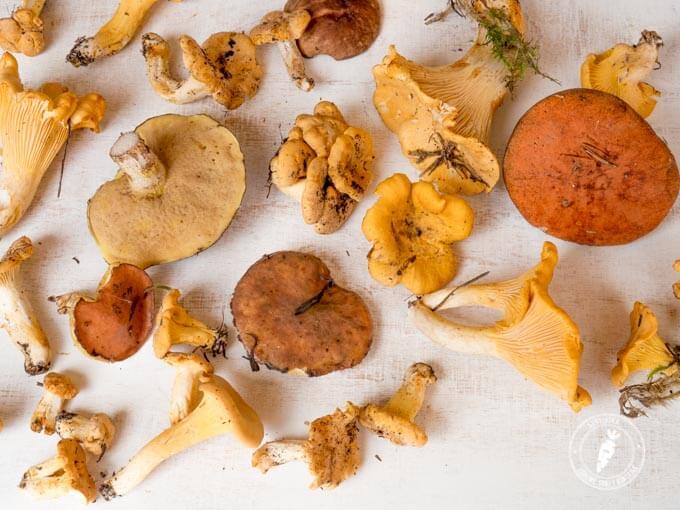jak zrobić grzanki z grzybami