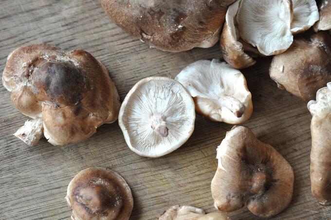 właściwości grzybów shitake