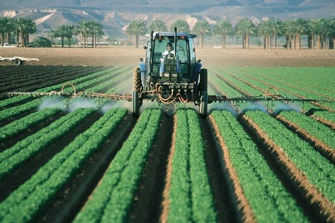 Jak usunąć z organizmu 90% pestycydów w 7 dni?