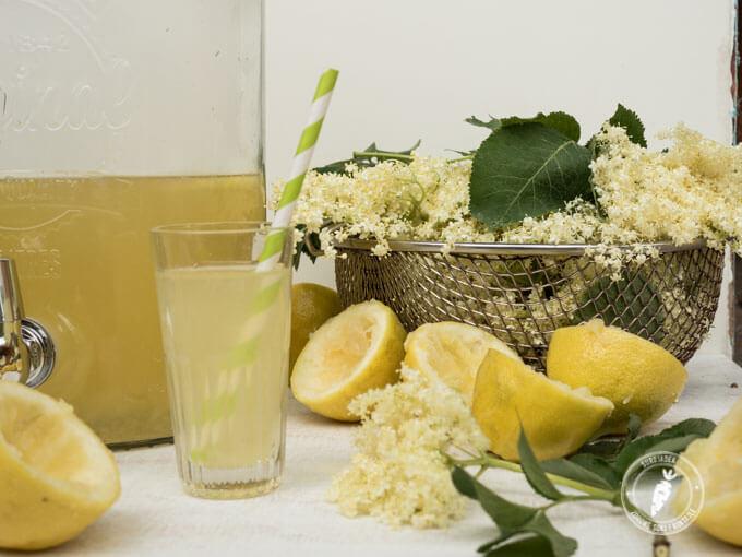 orzeźwiająca i aromatyczna lemoniada z kwiatów dzikiego bzu