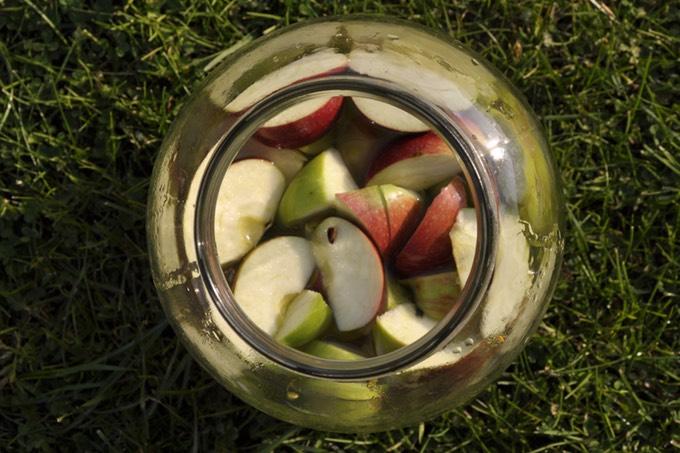 1 kg jabłek (dobre są antonówki, papierówki, kronselki, boiken), 1 l przegotowanej, letniej wody, 4-5 łyżek miodu lub cukru (ilość zależy od smaku jabłek, jabłka słodkie wymagają mniej cukru)