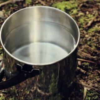 właściwości soku z brzozy