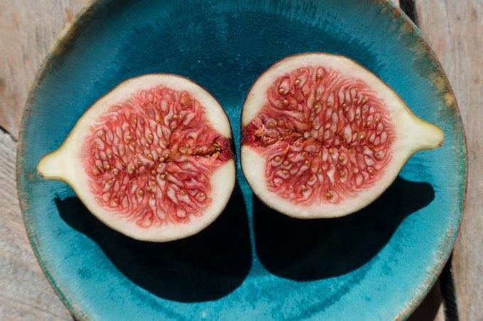 niezbędnę składniki odżywcze w diecie wegańskiej