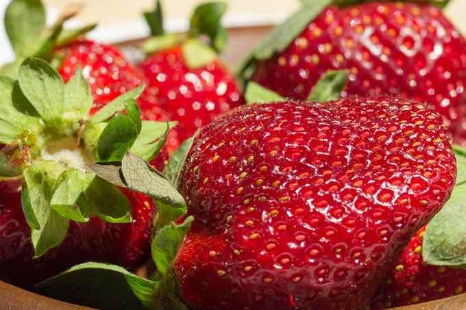 truskawki bogate źródło naturalnej witaminy c