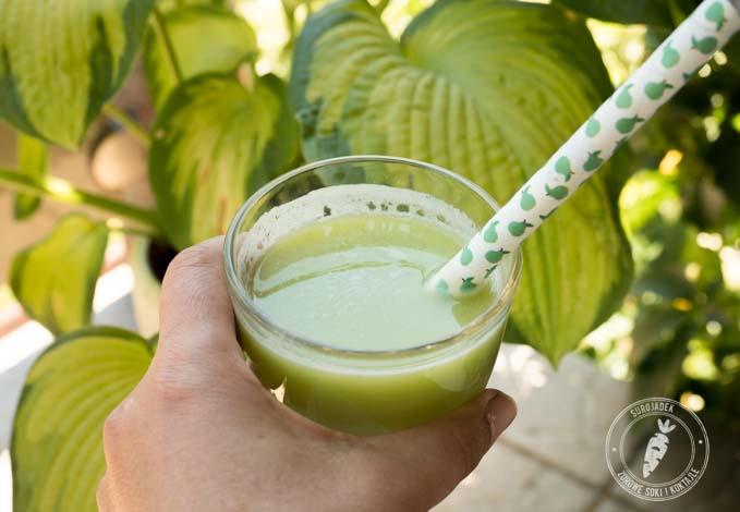zielony sok smakuje lepiej gdy jest schłodzony. Wystarczy dodać kostki lodu