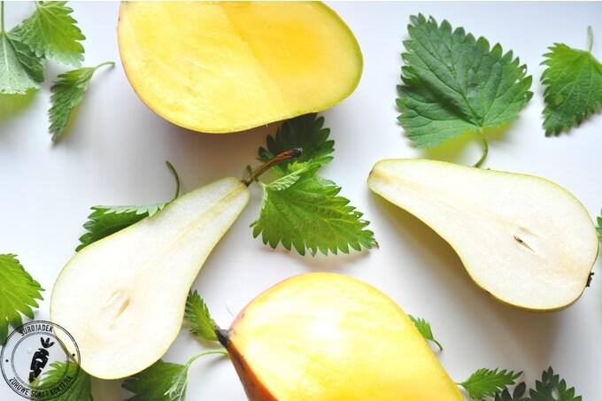 zielony koktajl z pokrzywą składniki